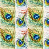 Peacock_2_shop_thumb