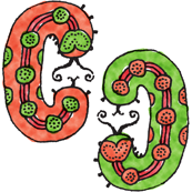 Caterpillars - Green and Coral