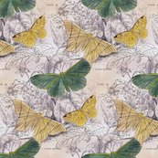Rmoths_canvas_1_shop_thumb