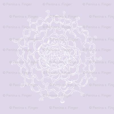 Lavender Chrysanthemum