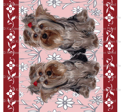 Yorkshire terrier wallpaper custom border