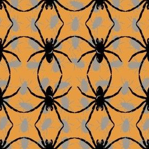 Spider_Dance Orange