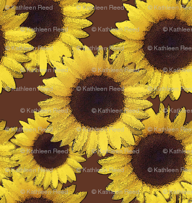 sunflowers in brown