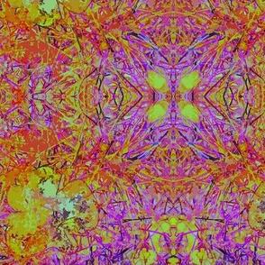 Fungi Kaleidoscope - Groovy