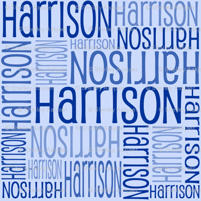 Personalised Name Fabric - Dark on Lt Blue