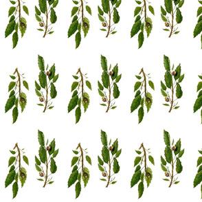 Oak_fabric_1_repeat