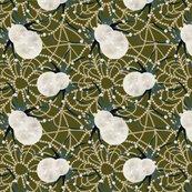 Rrspider-web-drawinggreen-01_shop_thumb