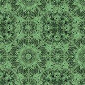 Peacockpolks_dot18_shop_thumb