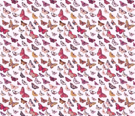 Butterflies Bright fabric by thistleandfox on Spoonflower - custom fabric