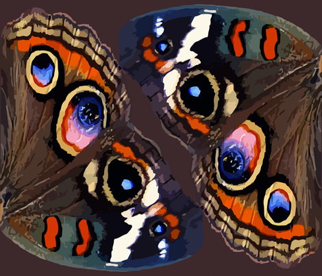 Buckeye Butterfly Wings fabric by bonnie_phantasm on Spoonflower - custom fabric