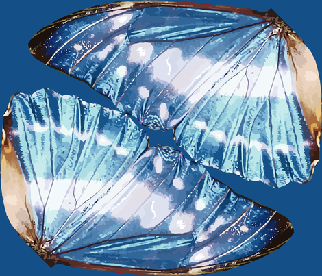 Blue Monarch Butterfly Wings fabric by bonnie_phantasm on Spoonflower - custom fabric