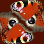 Rrrrbutterfly8_vector_fin_shop_thumb