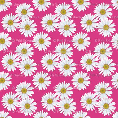 daisy_magenta_pattern