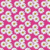 Rdaisy_magenta_pattern_shop_thumb