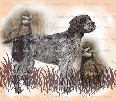 German Wirehaired Pointer With Quail fabric