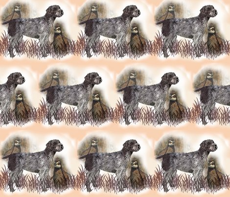 1487665_rgerman_wirehair_with_quail_shop_preview