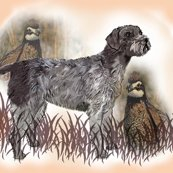 1487665_rgerman_wirehair_with_quail_shop_thumb