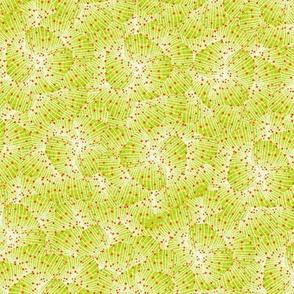 Kiwi petals