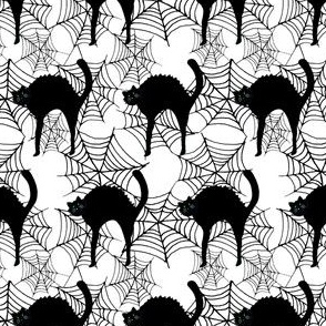 Black Cat & Spider Webs White