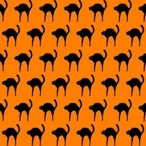 Black Cat on Halloween Orange