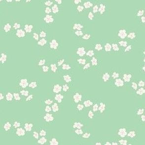 White blossom on mint