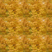yellow_leaf_layer