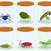 Rbugs_in_jars_shop_thumb