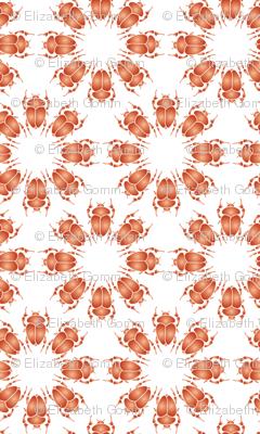 Orange bug flowers