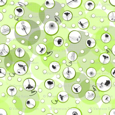 Bubbles-C