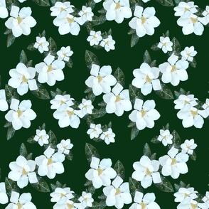 magnolia1-150