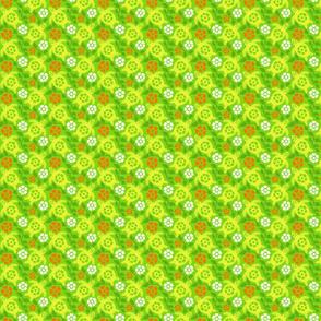 turtle1-01