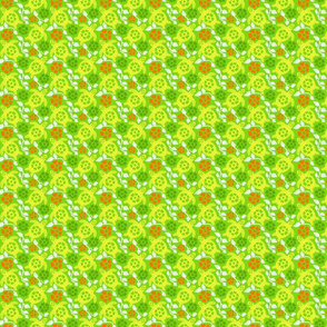 turtle11-01