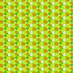 turtle18-01