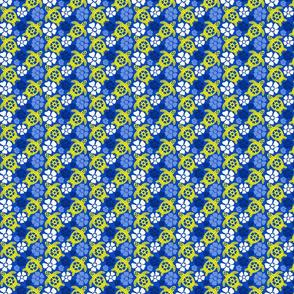turtle24-01