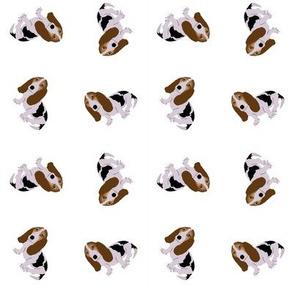 Basset Hound Tossed on White (Micro)