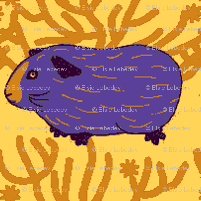 Guinea pig & a bush (Complementary Colours)