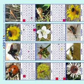 Bug Calendar 2013