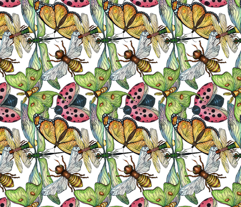 Wings 2 fabric by annacole on Spoonflower - custom fabric