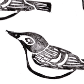 Hand Carved - Black-Capped Vireo