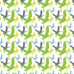 flighted_birds