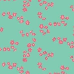 Coral blossom on aqua