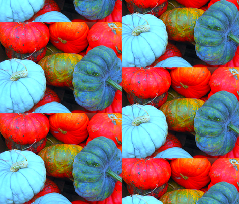 Pumpkins Galore! fabric by dovetail_designs on Spoonflower - custom fabric