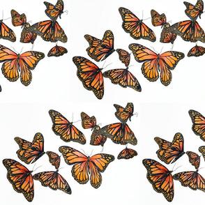 Butterfly mini Bodhi