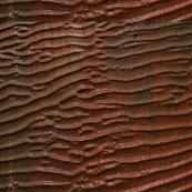ripples22-ed