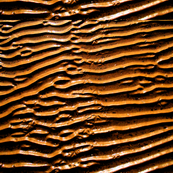 ripples222