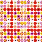 Flower_repeat_shop_thumb