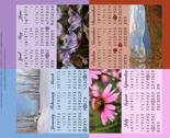 Rrrtea_towel_calendar_thumb