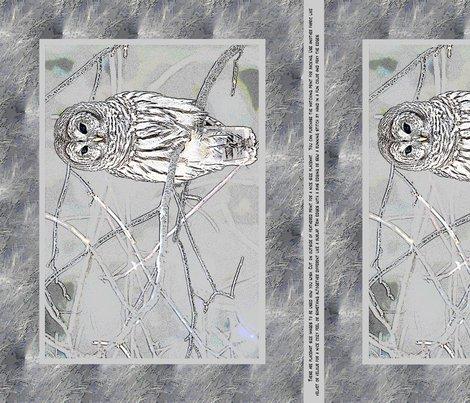 Owlfinal_shop_preview