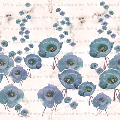 Poppies in a gray color way