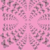 butterflies1